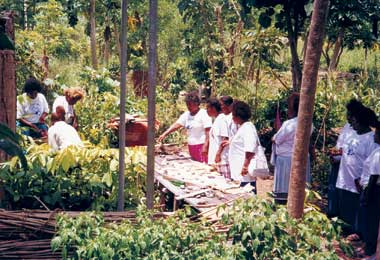 Visitors to the  PMN training garden